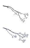 Silhouette de l'arbre de branchement illustration stock