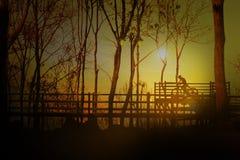 Silhouette de l'homme avec la bicyclette sur la vue crépusculaire de dessus de coucher du soleil dans salut Images stock
