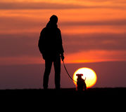 Silhouette de l'homme avec le chien au coucher du soleil Photos libres de droits
