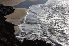 Silhouette de l'homme et du chien ayant l'amusement sur le bord de la mer Photo stock