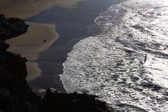 Silhouette de l'homme et du chien ayant l'amusement sur le bord de la mer Photo libre de droits
