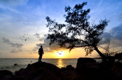 Silhouette de l'homme se tenant sur la roche recherchant le soleil Images stock