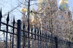 Silhouette de la cathédrale du sauveur sur le sang par les arbres de parc à St Petersburg, Russie image stock