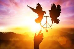 Silhouette de la colombe deux photo stock