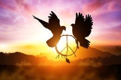 Silhouette de la colombe deux image libre de droits