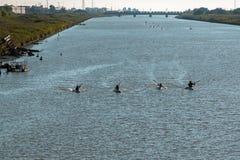 Silhouette de la concurrence de canoës sur la rivière photos libres de droits