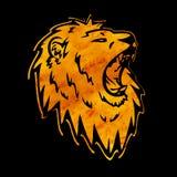 Silhouette de lion Photo stock
