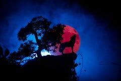 Silhouette de loup d'hurlement sur le fond brumeux modifié la tonalité foncé et pleine la lune ou le loup en silhouette hurlant à photographie stock libre de droits