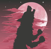 Silhouette de loup-garou hurlant à la lune Photo libre de droits