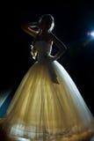 Silhouette de mariée Photos libres de droits