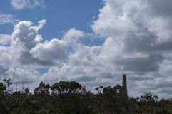 Silhouette de mine de Hallenbeagle Photos libres de droits