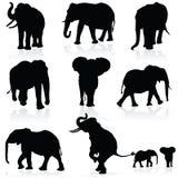 Silhouette de noir d'art noir d'éléphant Photographie stock libre de droits