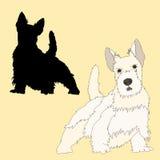 Silhouette de noir de chien de Terrier d'écossais réaliste Images libres de droits