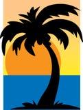 Silhouette de palmier Photo stock