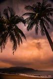 Silhouette de palmier au beau coucher du soleil tropical Image libre de droits