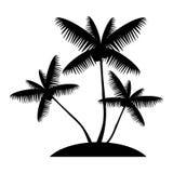 Silhouette de palmier de noix de coco Photographie stock libre de droits