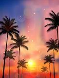 Silhouette de palmier quand du coucher du soleil Image stock