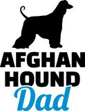 Silhouette de papa de lévrier afghan Photographie stock libre de droits