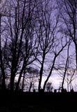 Silhouette de parc Photographie stock libre de droits