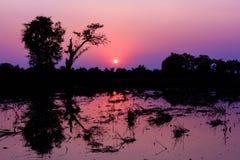 Silhouette de paysage image libre de droits