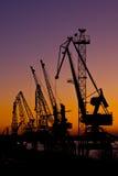 Silhouette de plusieurs grues dans un port Images libres de droits