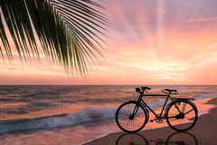 Silhouette de rétro bicyclette sur la plage sablonneuse Photo stock