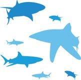 Silhouette de requin Images stock