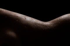 Silhouette de tentation de femelle indienne Photographie stock