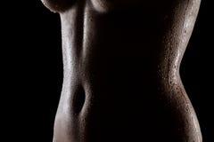 Silhouette de tentation de femelle indienne sexy Images stock