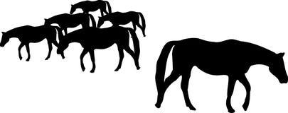 Silhouette de troupeau de cheval Images libres de droits