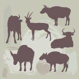Silhouette de vache, de taureau et de cerfs communs sur le fond grunge Vecteur Photos libres de droits