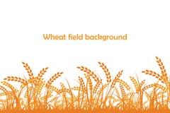 Silhouette de vecteur de blé Blé dans le domaine Photos libres de droits