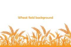 Silhouette de vecteur de blé Blé dans le domaine Photographie stock libre de droits