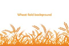Silhouette de vecteur de blé Blé dans le domaine Photographie stock