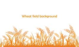 Silhouette de vecteur de blé Blé dans le domaine sur un blanc Photographie stock libre de droits