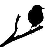 Silhouette de vecteur de l'oiseau Images stock