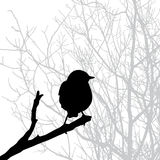 Silhouette de vecteur de l'oiseau Images libres de droits