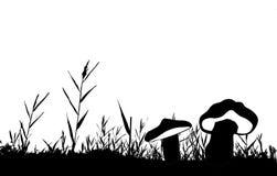 Silhouette de vecteur du roseau illustration libre de droits