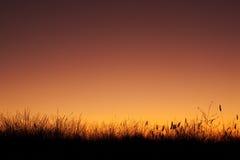 Silhouette de zone au coucher du soleil Images stock