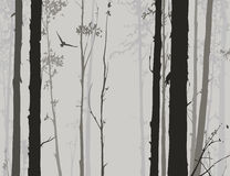 Silhouette of deciduous forest. With a flying owl 2 royalty free illustration