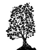 Silhouette of a deciduous tree. Silhouette art drawn deciduous tree on a white background stock illustration