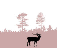 Silhouette of the deer Royalty Free Stock Photo
