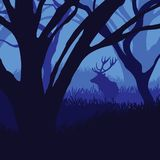 Silhouette deer in the forest Stock Image