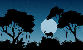 Silhouette of deer on the jungle landscape Stock Images