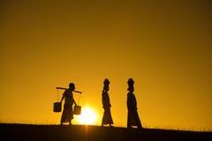 Silhouette des agriculteurs traditionnels asiatiques Photos stock