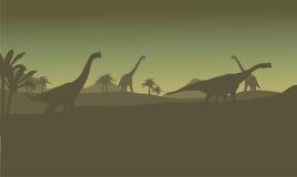 Silhouette des beaucoup brachiosaurus en collines Photos libres de droits