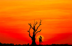 Silhouette des couples dans l'amour avec le grand coucher du soleil et l'arbre mort Photos stock
