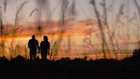 Silhouette des couples de marche banque de vidéos