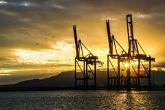 Silhouette des grues industrielles pendant le coucher du soleil images stock