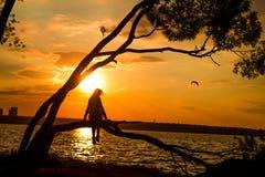 Silhouette des jeunes femmes s'asseyant sur l'arbre au coucher du soleil photographie stock